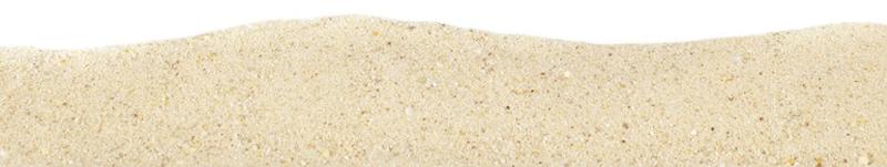 Contact Buzprint Sand